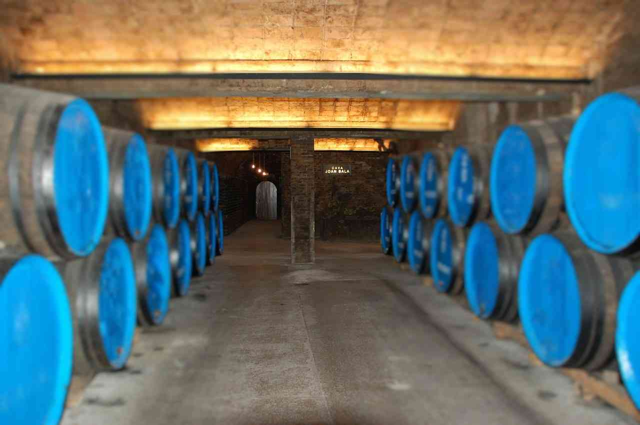 10KeyThings-Wine-Cellar Know your wine better