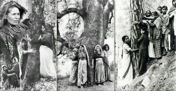 10KeyThings-Chipko-movement-India 10 Protests that you have probably never heard about
