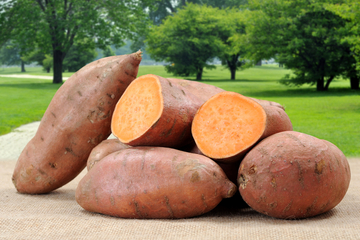 sweet-potatoes What you eat is how you perform: Part 1