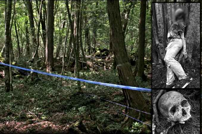 10KeyThings-Aokigahara-Forest-Japan 10 Haunted places you don't want to tresspass on
